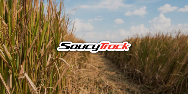 Soucy Track